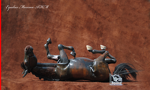 "Maria Talasz - Equilux Articulated Horse ""Maxima"" rolling, taking a dust bath"