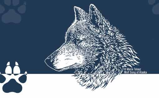 Wolf Song of Alaska - Facebook Art by Maria Talasz, Equilux